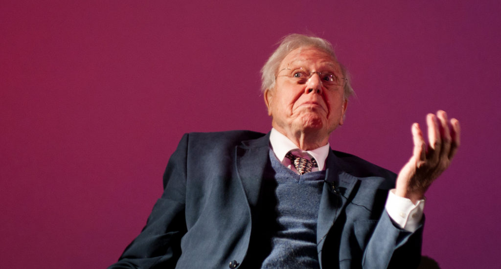 Mook News - David Attenborough