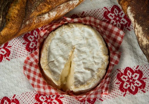 Mook News - Camembert