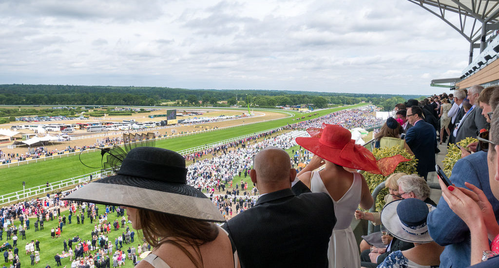 Mook News - Royal Ascot