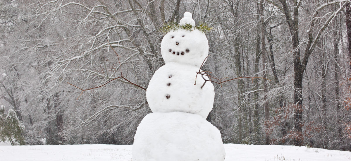 Mook News - The Snowman